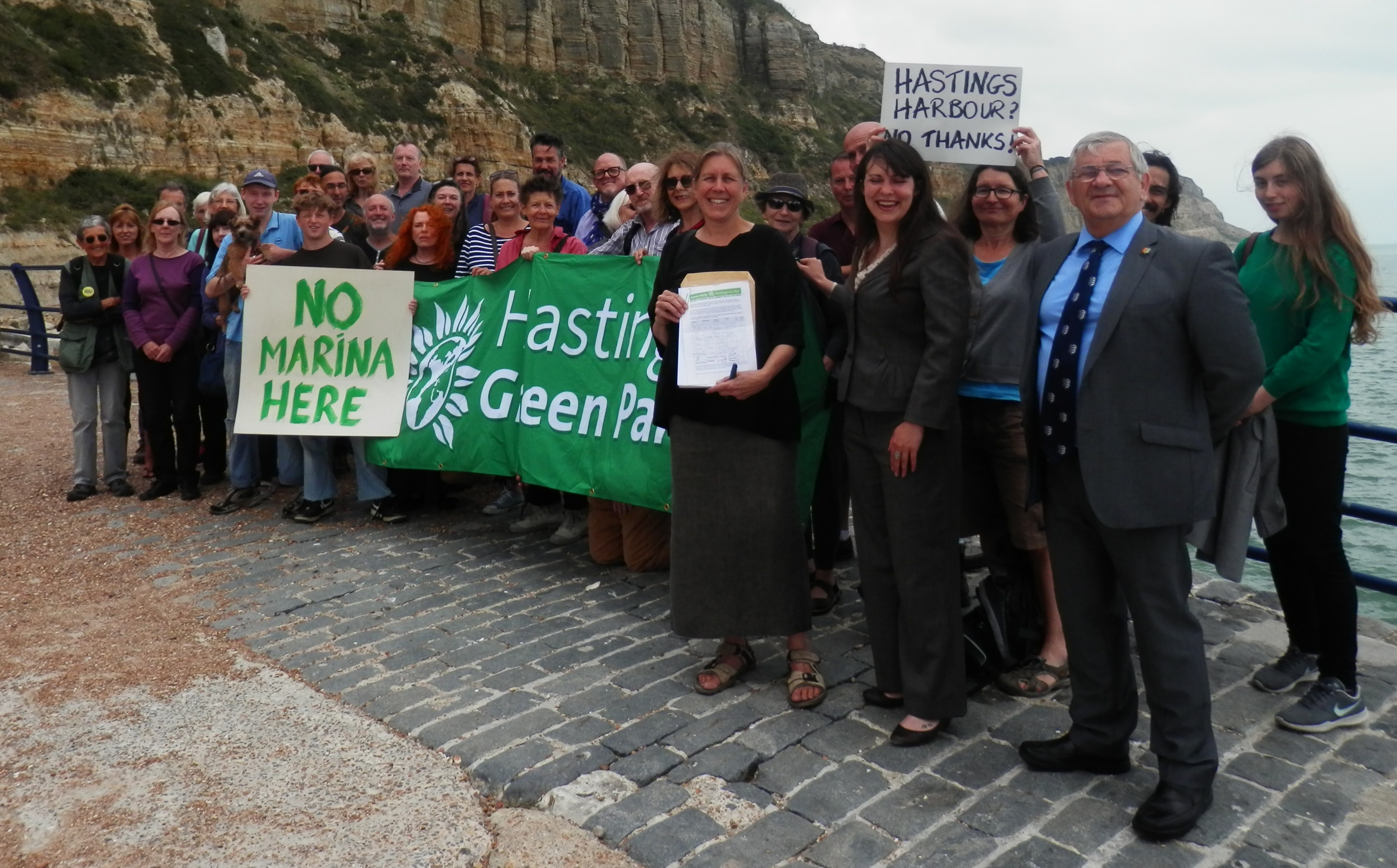 Green Party petition urges council to reject harbour plans