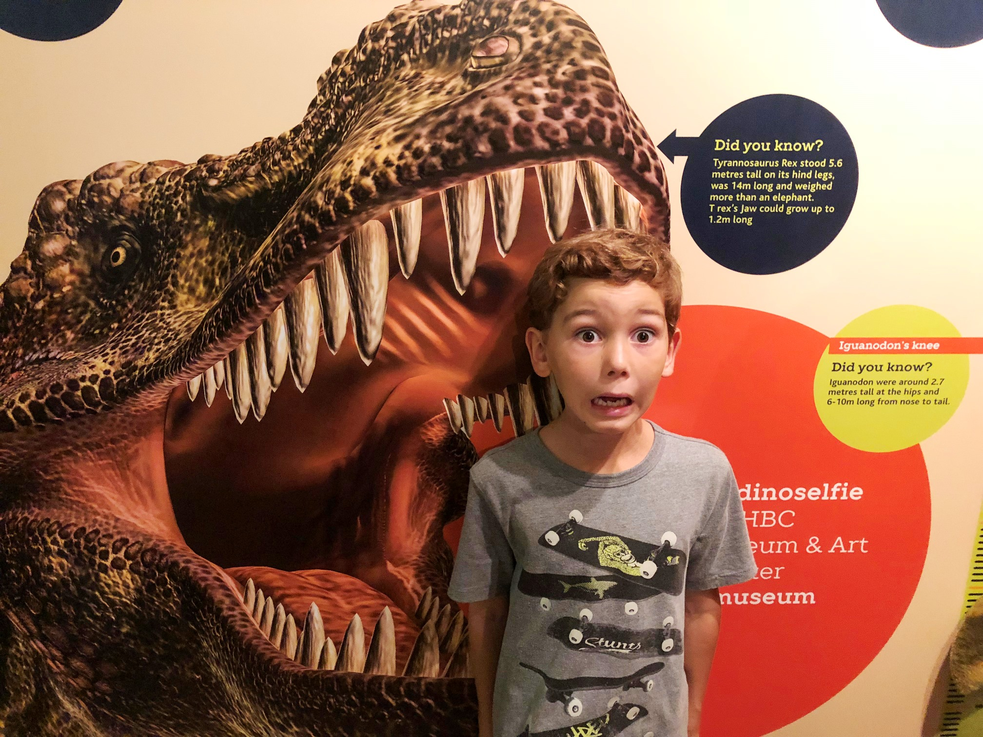 Dino-tastic day for families at Hastings Museum & Art Gallery