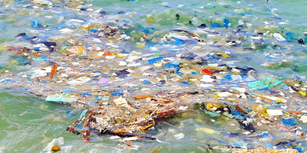 Join in Hastings' greens great plastic purge