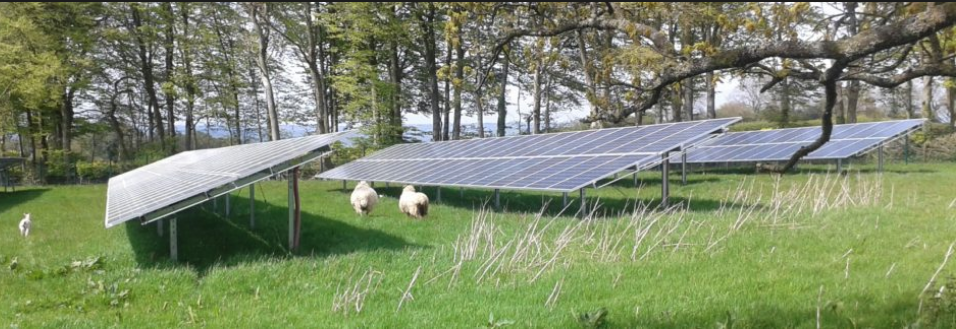 Solar farm on the cards for Hastings Country Park