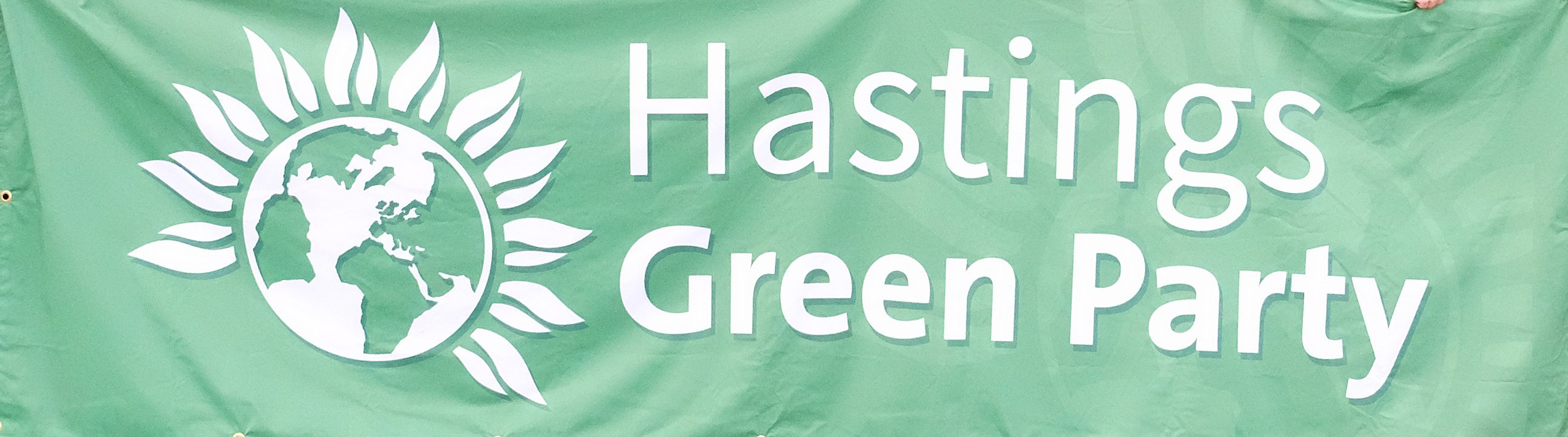 Hastings' Greens say council's climate change motion 'lacks ambition'