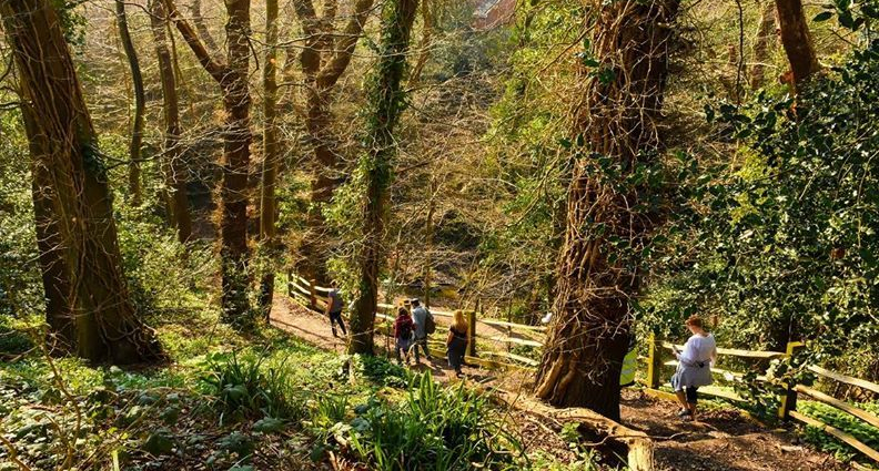 Greenway walk will take in Ore Valley this weekend