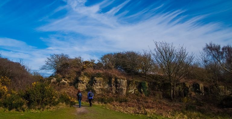 A walk on the wild side! Greenway Group heads for the Country Park