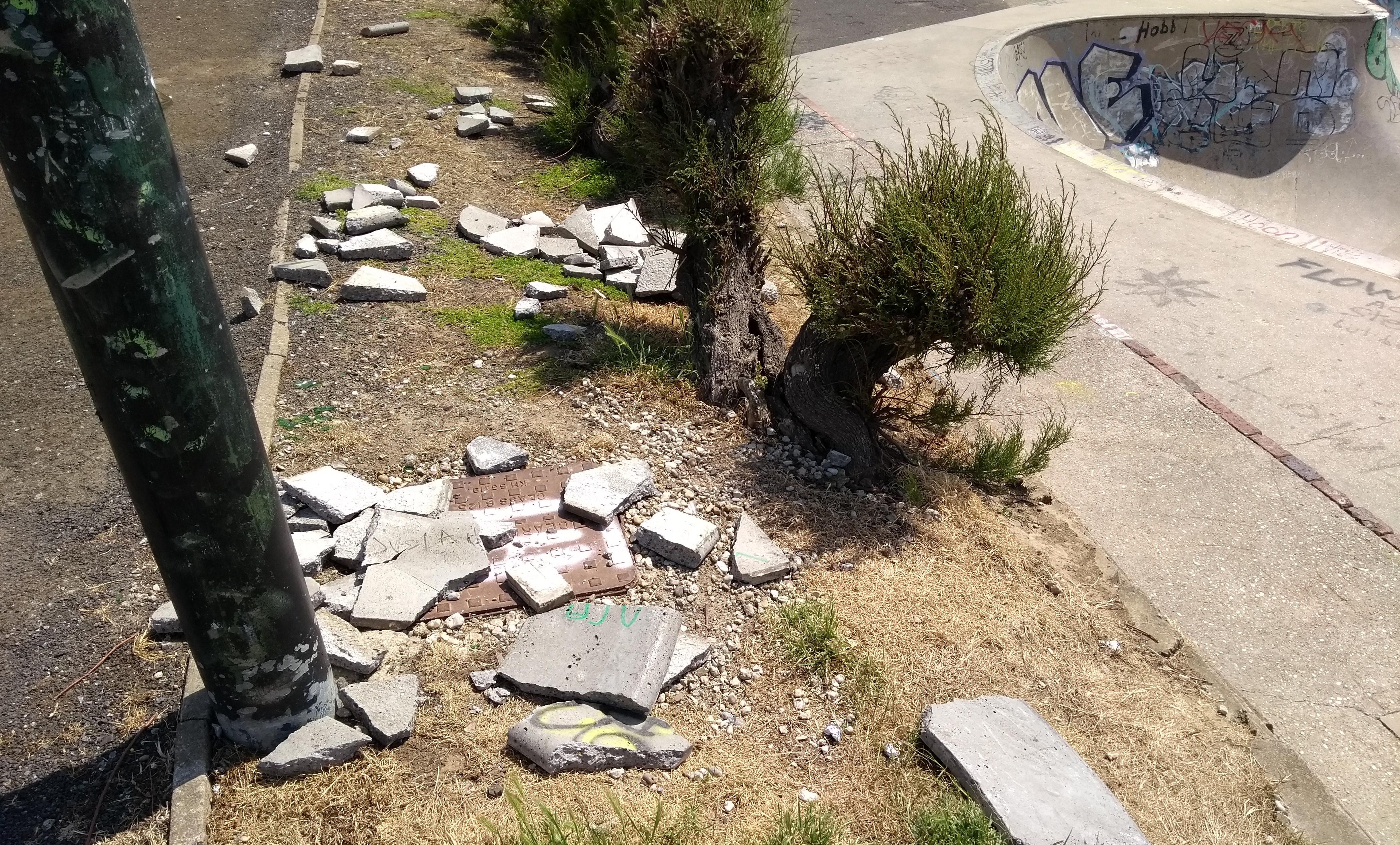 Criminal damage at skate park threatens its closure