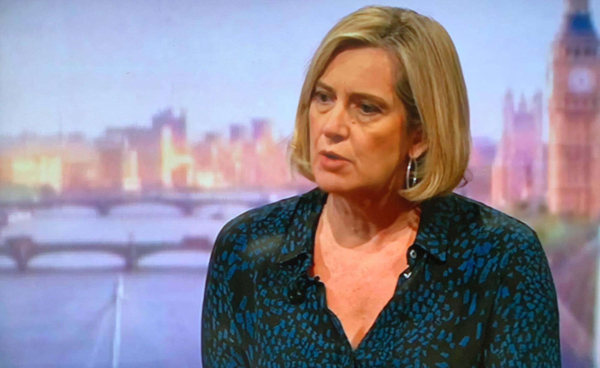 Rudd's move was 'elegant pivot' not a careerist U-turn