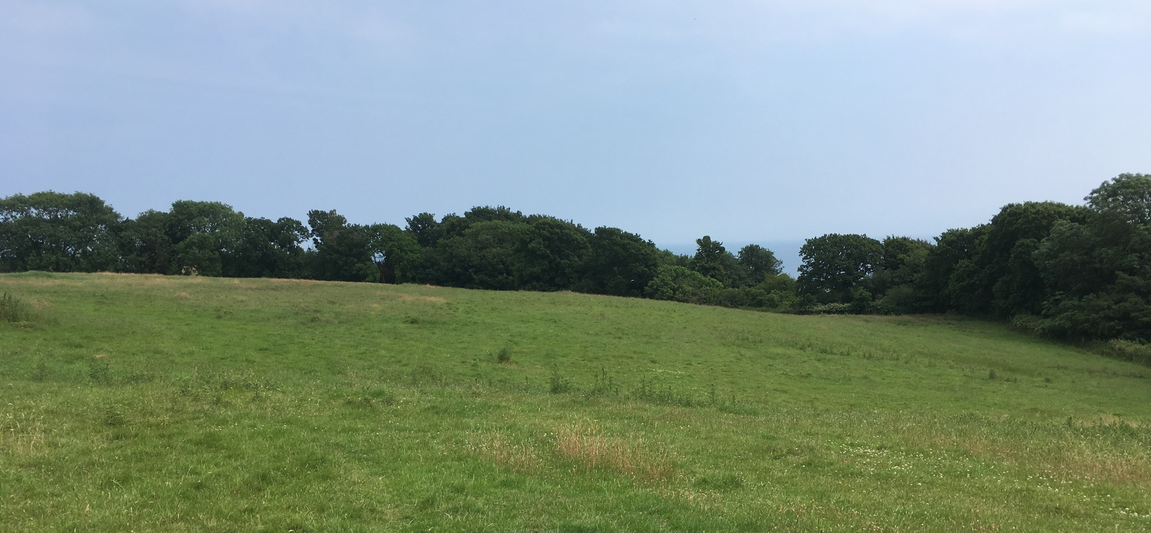 The Environmental Paradox in Hastings Country Park