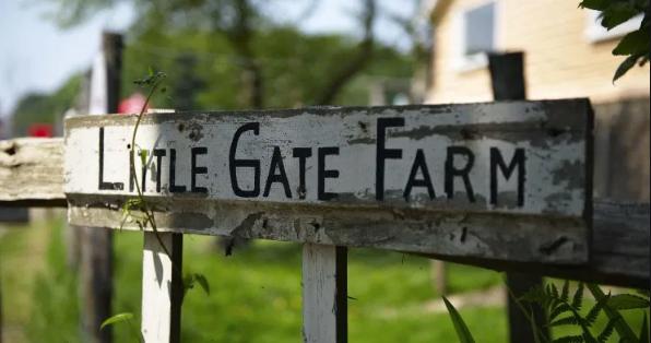 Little Gate Farm launches supported apprentice scheme