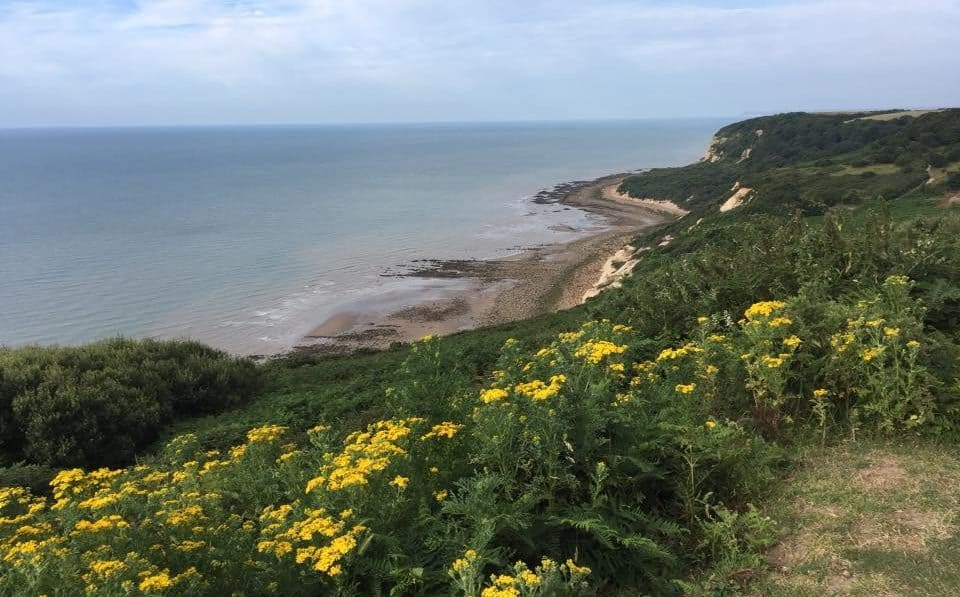 Two sites in Hastings Country Park still in contention as locations for solar panel installation