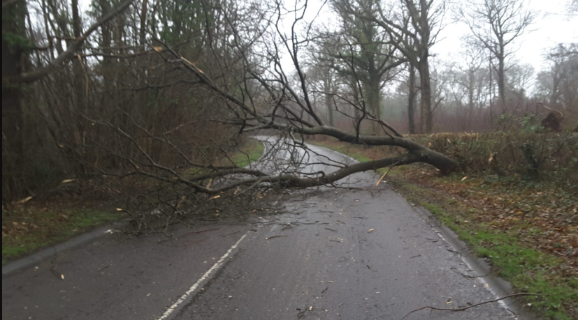 Rogue trader warning issued after weeks of high winds and rain