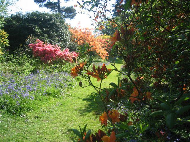 Open garden season returns in May – explore 'breathtaking' private gardens