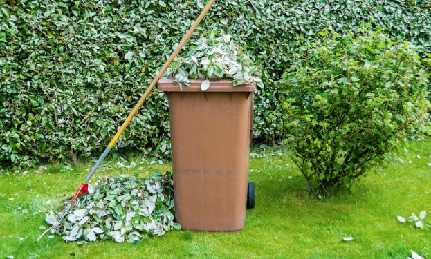 Garden waste collections starting again in Hastings