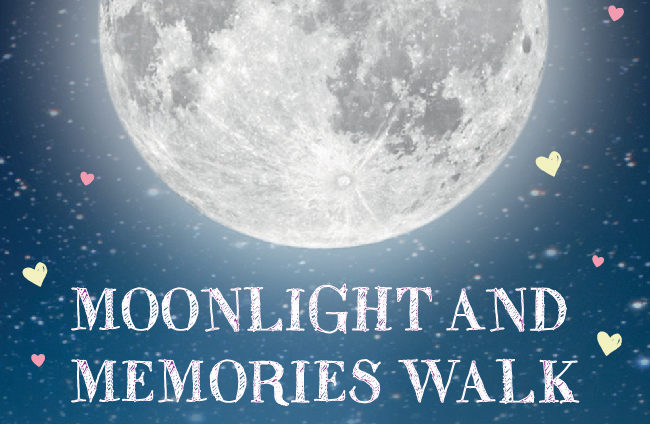St Michael's Hospice gives you moonlight and memories in your own back garden