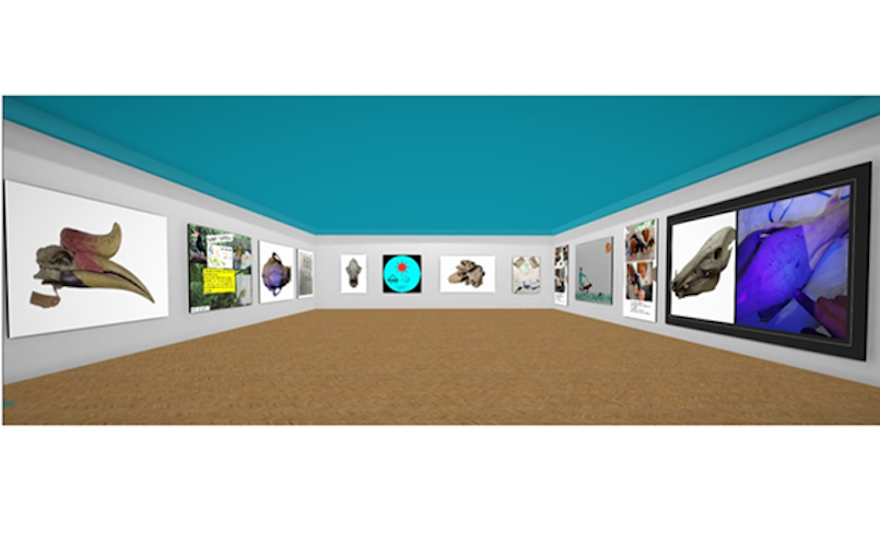 Hastings Museum and Art Gallery launches new virtual exhibition