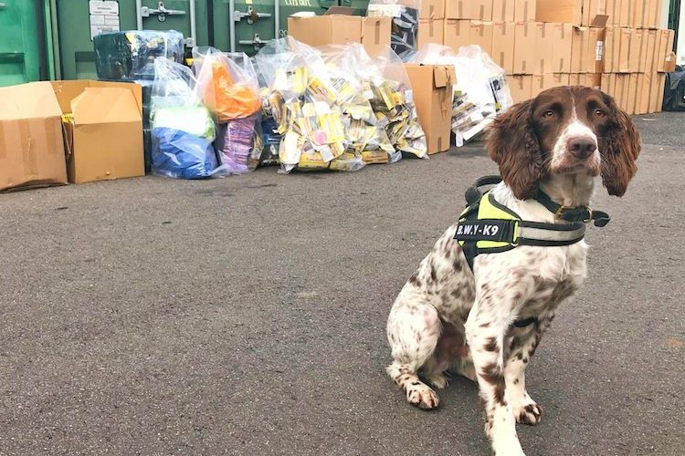 Prison for man behind largest ever haul of illegal tobacco in East Sussex
